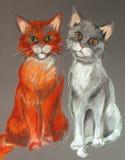 γάτες τρελλές Στοκ φωτογραφίες με δικαίωμα ελεύθερης χρήσης