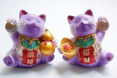 γάτες τυχερές στοκ εικόνες με δικαίωμα ελεύθερης χρήσης