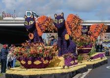Γάτες των λουλουδιών Παρέλαση Bloemencorso Bollenstreek λουλουδιών Στοκ Εικόνες