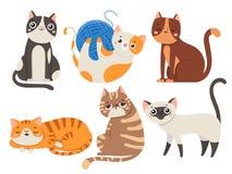 γάτες χαριτωμένες Η χνουδωτή γάτα, ο καθμένος χαρακτήρας γατακιών ή τα κατοικίδια ζώα απομόνωσαν τη διανυσματική συλλογή απεικόνι ελεύθερη απεικόνιση δικαιώματος