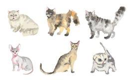 Γάτες Watercolor καθορισμένες ελεύθερη απεικόνιση δικαιώματος