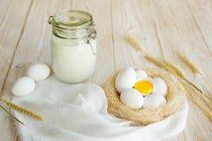 γάλα αυγών Στοκ φωτογραφίες με δικαίωμα ελεύθερης χρήσης