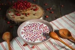 Γάλα και άγρια φράουλα Στοκ Φωτογραφίες