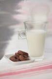 Γάλα και λίγη σοκολάτα donuts Στοκ Εικόνα