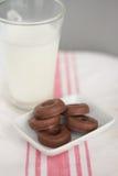 Γάλα και λίγη σοκολάτα donuts Στοκ Εικόνες
