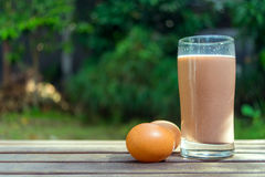 Γάλα και αυγά σοκολάτας στο ξύλινο έδαφος στο πράσινο υπόβαθρο Στοκ φωτογραφίες με δικαίωμα ελεύθερης χρήσης