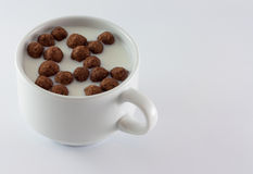 Γάλα και γλυκά Στοκ εικόνες με δικαίωμα ελεύθερης χρήσης