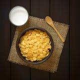 γάλα νιφάδων καλαμποκιού Στοκ εικόνα με δικαίωμα ελεύθερης χρήσης