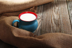 Γάλα σε μια όμορφη κούπα Στοκ Εικόνα