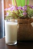 Γάλα στο γυαλί Στοκ εικόνα με δικαίωμα ελεύθερης χρήσης