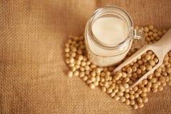 Γάλα σόγιας και φασόλια σόγιας Στοκ εικόνες με δικαίωμα ελεύθερης χρήσης