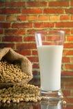 Γάλα σόγιας Στοκ εικόνες με δικαίωμα ελεύθερης χρήσης