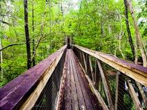 γέφυρα αγροτική στοκ φωτογραφία με δικαίωμα ελεύθερης χρήσης