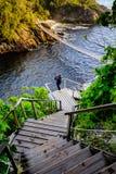 Γέφυρα αναστολής στο εθνικό πάρκο εκβολών ποταμού θυελλών στοκ εικόνες