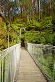 Γέφυρα αναστολής στο δάσος στοκ φωτογραφία