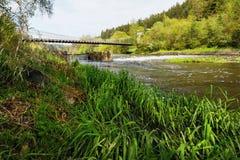 Γέφυρα αλυσίδων Stadlecky και φύση άνοιξη γύρω, Τσεχία Στοκ Φωτογραφίες