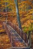 Γέφυρα για πεζούς και φύλλωμα στοκ εικόνα με δικαίωμα ελεύθερης χρήσης