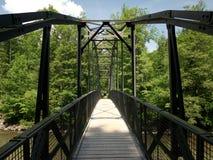 Γέφυρα για πεζούς πέρα από τον ποταμό στα ξύλα Στοκ εικόνα με δικαίωμα ελεύθερης χρήσης