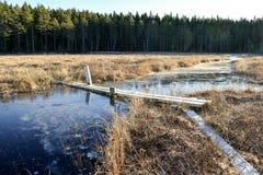 Γέφυρα για πεζούς πέρα από το παγωμένο νερό Στοκ φωτογραφία με δικαίωμα ελεύθερης χρήσης