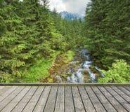 Γέφυρα για πεζούς πέρα από το ρεύμα βουνών Στοκ εικόνα με δικαίωμα ελεύθερης χρήσης