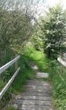 Γέφυρα για πεζούς πέρα από το ρεύμα Treeton Rotherham Στοκ εικόνες με δικαίωμα ελεύθερης χρήσης