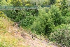 Γέφυρα για πεζούς, Arroyo Grande Στοκ Εικόνες