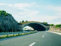 Γέφυρα για τα ζώα στο δρόμο Πράσινη γέφυρα πέρα από το δρόμο Στοκ Φωτογραφίες