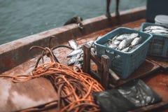 Γέφυρα ενός αλιευτικού σκάφους με την προσγείωση τόνου Στοκ φωτογραφίες με δικαίωμα ελεύθερης χρήσης