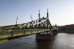 Γέφυρα ελευθερίας (Βουδαπέστη) Στοκ εικόνα με δικαίωμα ελεύθερης χρήσης