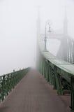 Γέφυρα ελευθερίας στη Βουδαπέστη Στοκ φωτογραφία με δικαίωμα ελεύθερης χρήσης
