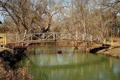 Γέφυρα ΙΙ κολπίσκου του Τέξας Στοκ Φωτογραφία