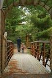 Γέφυρα κάπου στοκ εικόνα με δικαίωμα ελεύθερης χρήσης