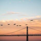 Γέφυρα και πουλιά Στοκ Εικόνα