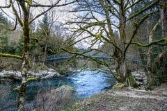 Γέφυρα και mossy καταρράκτης δέντρων saut πλησίον du Doubs στοκ φωτογραφίες