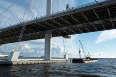 Γέφυρα καλωδίων μέσω δυτική μεγάλη διάμετρος στη Αγία Πετρούπολη Στοκ Εικόνα
