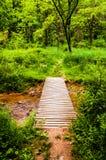 Γέφυρα κατά μήκος ενός ίχνους σε ένα πολύβλαστο δάσος στο κρατικό πάρκο Codorus, μάνδρα Στοκ φωτογραφία με δικαίωμα ελεύθερης χρήσης