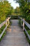 Γέφυρα λιμνών ξύλων Sapsucker και γέφυρα παρατήρησης Στοκ εικόνα με δικαίωμα ελεύθερης χρήσης