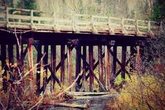 Γέφυρα μέσω των ξύλων Στοκ Φωτογραφία