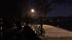 Γέφυρα με τα κιγκλιδώματα στο πάρκο στο σκοτάδι φιλμ μικρού μήκους