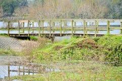 Γέφυρα με την αντανάκλαση στο νερό Στοκ Εικόνες