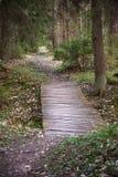 γέφυρα μικρή Στοκ Εικόνα