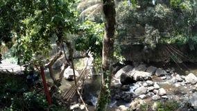 Γέφυρα μπαμπού πέρα από τον ποταμό βουνών φιλμ μικρού μήκους