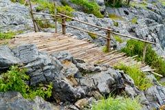 Γέφυρα μπαμπού στοκ εικόνα με δικαίωμα ελεύθερης χρήσης
