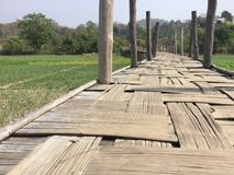 Γέφυρα μπαμπού Sutongpe Στοκ εικόνες με δικαίωμα ελεύθερης χρήσης