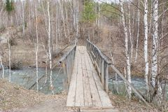 γέφυρα ξύλινη Η γέφυρα από ένα δέντρο μέσω ενός ρεύματος Στοκ Εικόνες