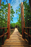 γέφυρα ξύλινη Στοκ Φωτογραφία