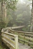 γέφυρα ξύλινη Στοκ Εικόνα