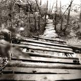 γέφυρα πέρα από τον ποταμό ξύλινο Στοκ Φωτογραφίες