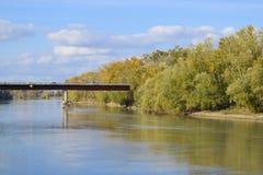 Γέφυρα πέρα από τον ποταμό Φύλλα φθινοπώρου στις λεύκες κατά μήκος της όχθης ποταμού Στοκ φωτογραφίες με δικαίωμα ελεύθερης χρήσης