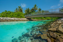 Γέφυρα πέρα από το ρεύμα στις Μαλδίβες Στοκ Εικόνες